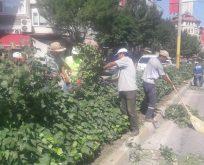 Belediye Park Ve Bahçeler Müdürlüğü çalışıyor