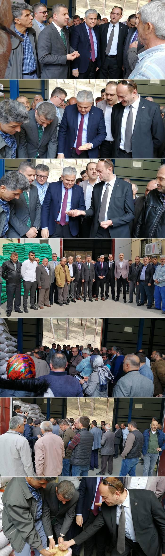 Boyabat'ta Çeltik Üreticilerine bugün Boyabat Kalesi Çeltik tohumu dağıtıldı.