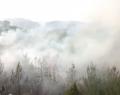 Eğlence Köyündeki Yangın Söndürüldü (Video)