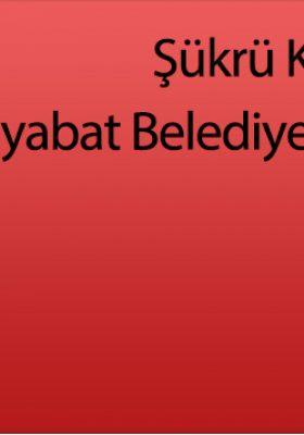 Şükrü Kaya MHP Boyabat Belediye Başkan Adayı Oldu