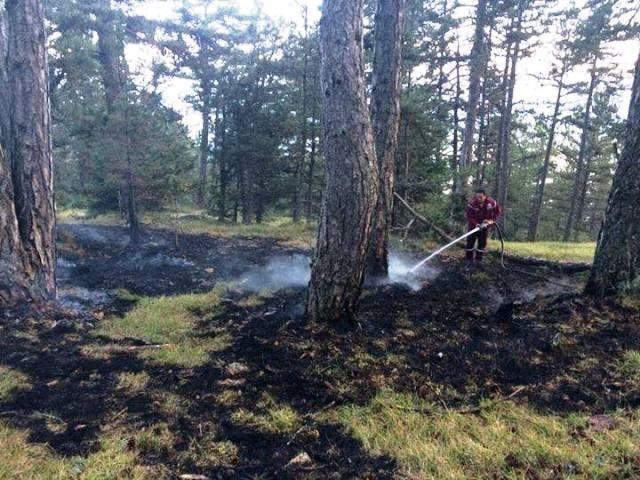Yaylaya Yıldırım Düştü, Ormanda Yangın Çıktı
