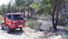 Son Dakika. ALibeyköy-Bağlıca Arasında Orman Yangını