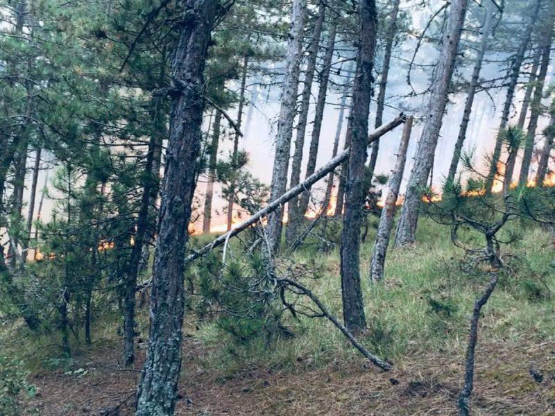 Yangın Söndürüldü Soğutma Çalışmaları Yapılıyor
