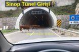 Sinop Tünel Girişi