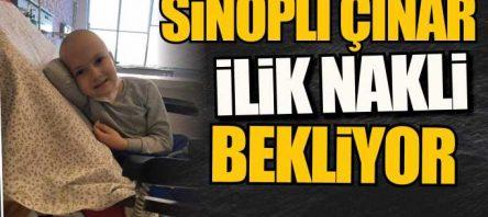 Sinoplu Çınar, ilik nakli bekliyor